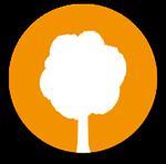 Moskito parquets Barcelona árbol picto natural